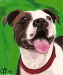 Oil Pastel Portrait Of Lucy