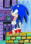 Sonic At Hydrocity
