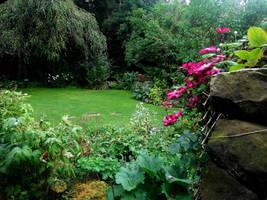 Garden by devilswearingprada