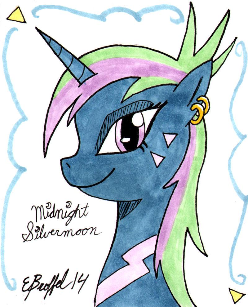 Midnight Silvermoon Color Card by Cartoon-Eric