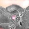 lobster kitten by hinstarsion