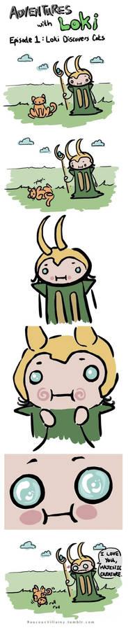 Adventures with Loki 1