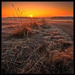 The Solstice by rad-ix