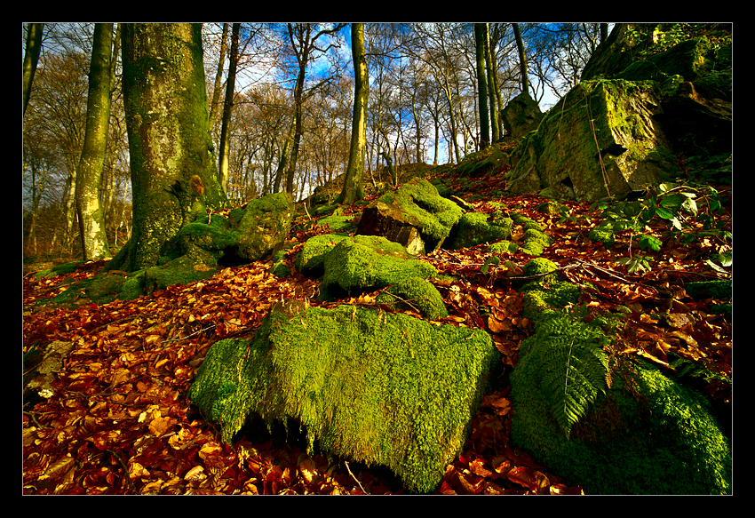 Through Metamorphic Rocks by rad-ix