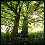 Secrets of the Sun by rad-ix