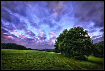 Twilight World by rad-ix
