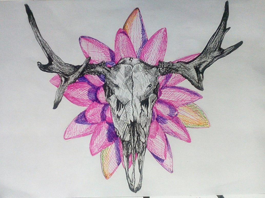 Skull with flower by AoiOuradi on DeviantArt