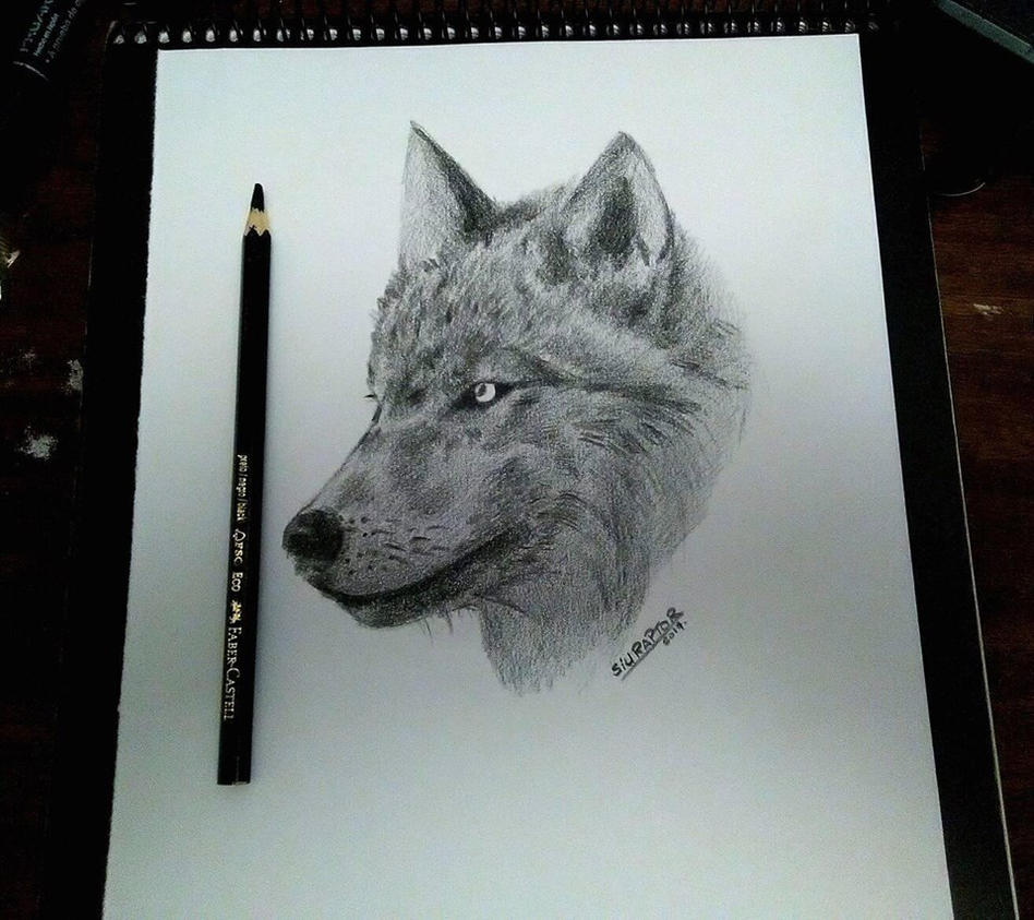 wolf by paranoiacritica