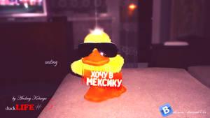 duckLIFE#5_casting_new_meksika