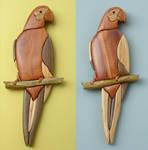 parrot variations
