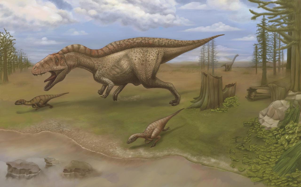 Acrocanthosaurus atokensis by AshiRox