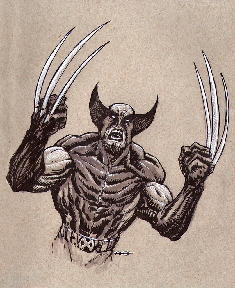 Wolverine Sketch by AlexFactory
