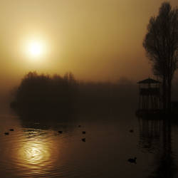 Misty Morning at the Lake 2