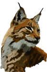 Lynx by dig-dug