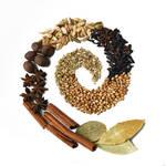 Spice Spiral by jojo22