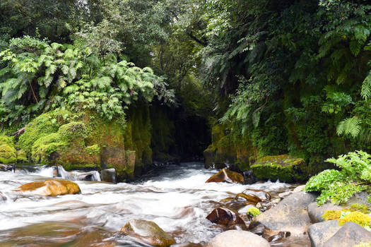 Te Wahiti Nui A Toi Canyon