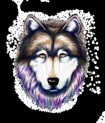 Watercolour Wolf