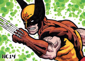 Sketchcards Marvel Wolverine by hamdiggy