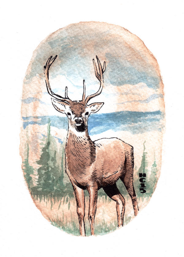 Watercolor Deer 01 by hamdiggy