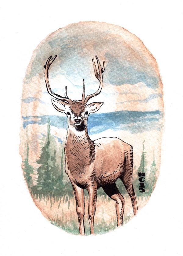 Watercolor Deer 01