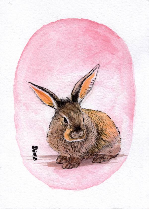 Watercolor Rabbit 01 by hamdiggy