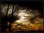 minnesota sunrise 16