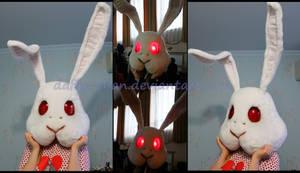 Rabbit Doubt, the head
