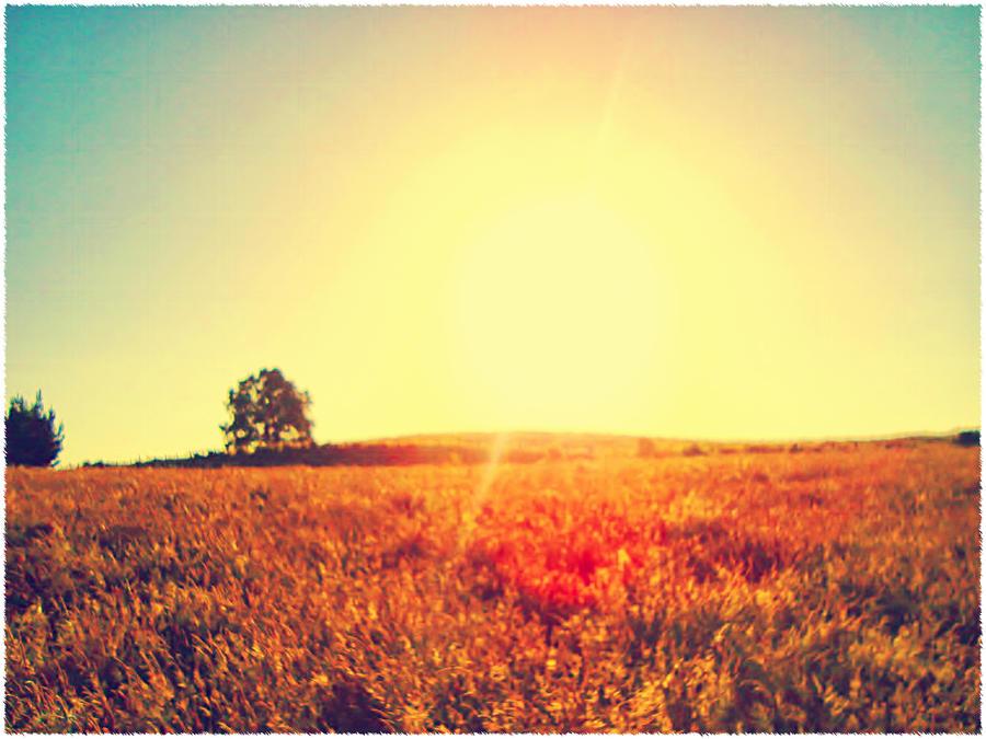 Sunshine by FloresKruuse