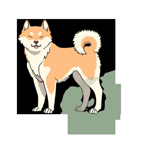 Okami Dog Breed