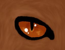 Le Cat Eye Fail~ by Silverpaw6