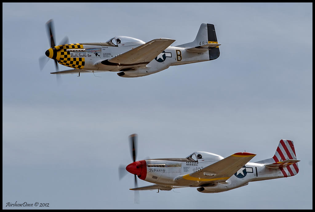 Pair of Mustangs II by AirshowDave