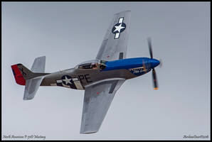 Little Sandra by AirshowDave