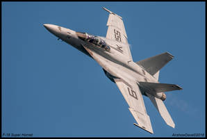 Super Hornet II by AirshowDave