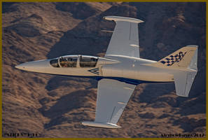 Paul Sticky Strickland L-39 by AirshowDave