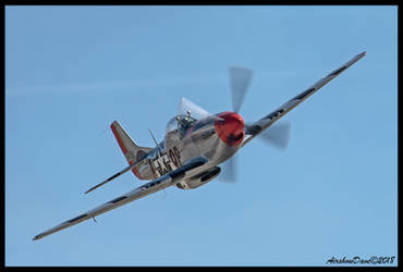 P-51D Mustang by AirshowDave