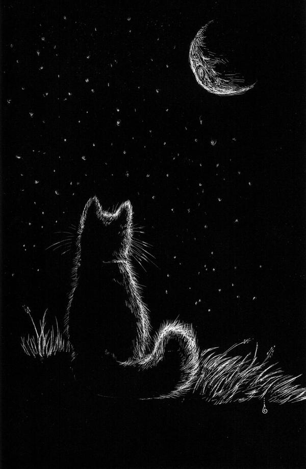 Cat who loved the Moon by keysan