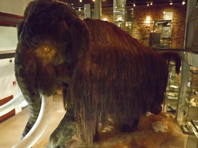 mammoth by SpellpearlArts