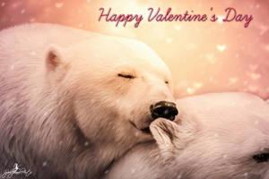Polar-Love