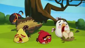 Angry Birds - Error