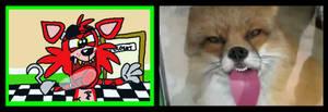 Fox(y) Licking the Window