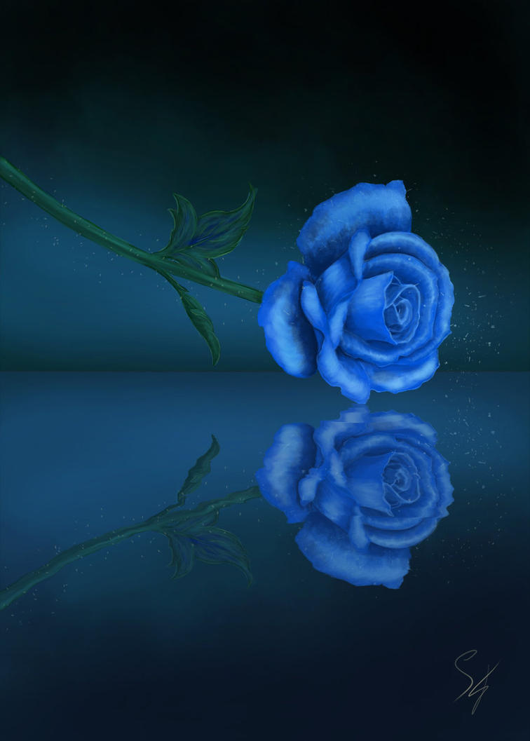 Blue Rose by Falaryen