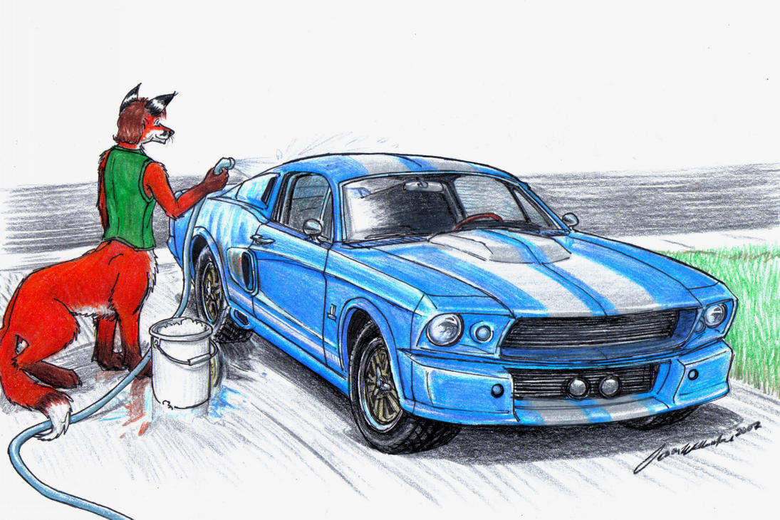 Baby Needs a Bath by wannabemustangjockey on DeviantArt