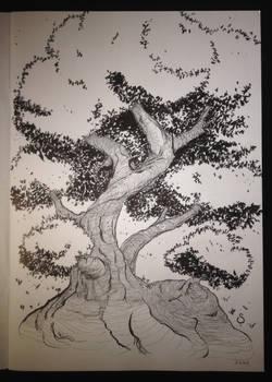2015 12 07 Tree-lines