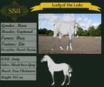 SBR Lady of the Lake