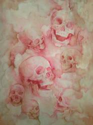Skull Study by anti-ignoramus