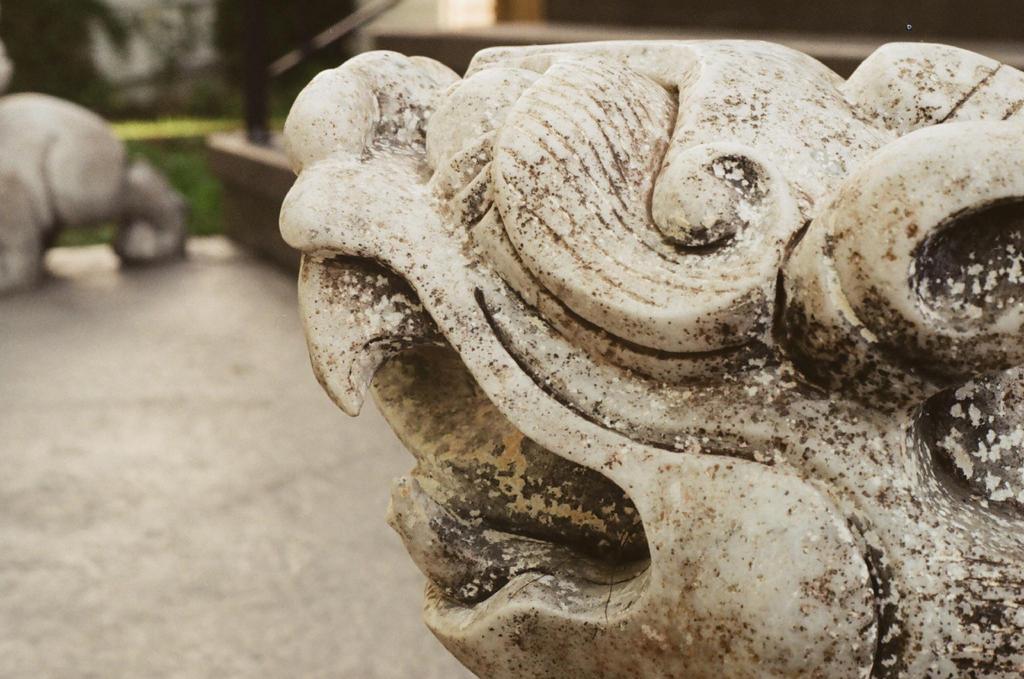 Stone by Skull-Killer