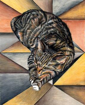 Felinus Geometrica