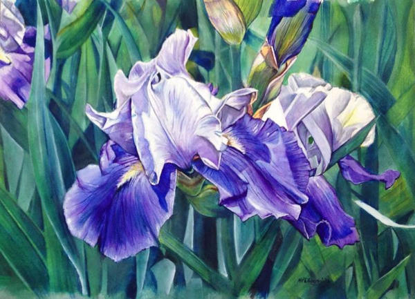 Untitlted Iris #4