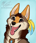 (Request) Feather the Coyote