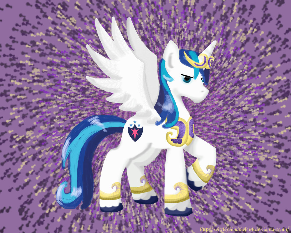 Shining Armor is the best princess by WitchBehindTheBush